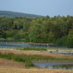 Einbeck_-_Naturschutzgebiet_Leinetal